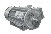 LOHER 西門子 羅爾 高電壓電機 發生器