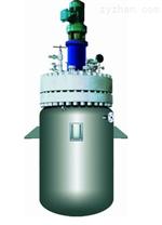 山东龙兴-高压磁力反应釜   反应釜