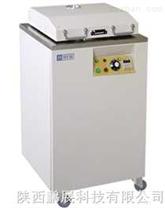 立式高压灭菌器DYML-S50J