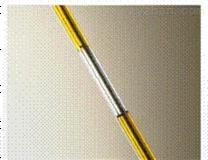 微管阳性样品