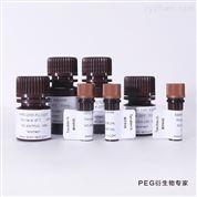 PEI-PEG-DSPE 磷脂-聚乙二醇-聚乙烯亚胺