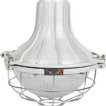 LED防爆紧凑节能灯