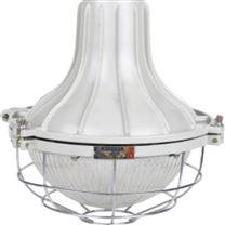 LED高效节能防爆灯