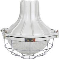 BPC8766ZBD111-180W吸顶式LED防爆灯