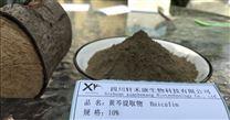 黄芩提取物四川轩禾康生物科技有限公司