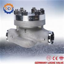 進口低溫止回閥產品特點-德國洛克