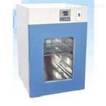 上海子期DNP系列電熱恒溫培養箱