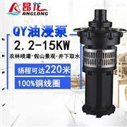 三相油浸式潜水电泵 大流量大口径潜水泵