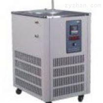 DLSB-5L密闭低温循环泵